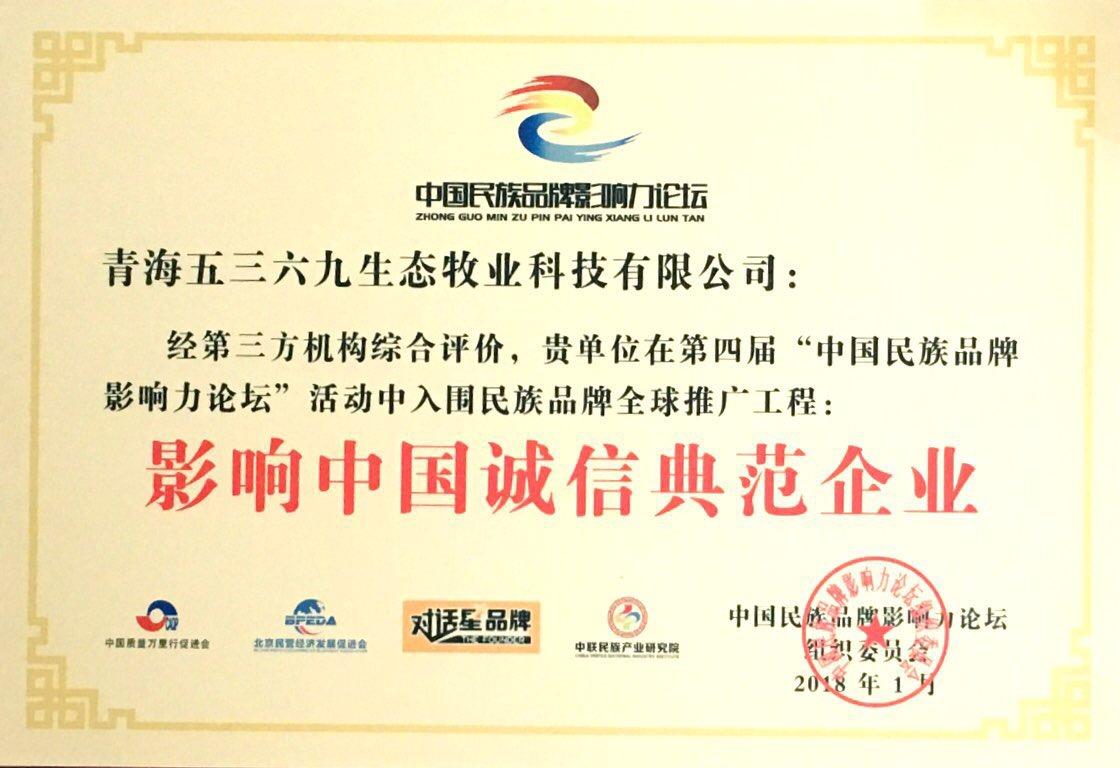 影响中国诚信典范企业