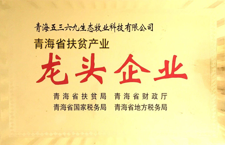 青海省扶贫产业龙头企业