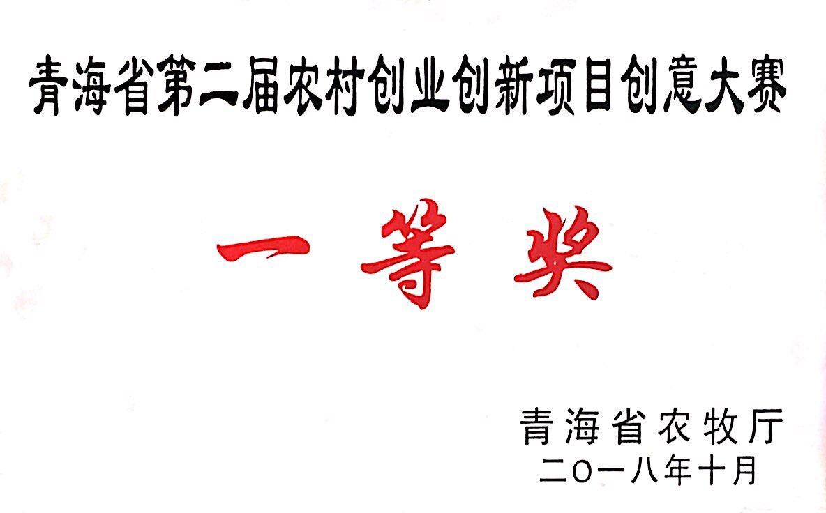 青海省第二届农村创业创新项目创意大赛一等奖
